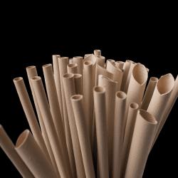 Regular Bamboo Straws...